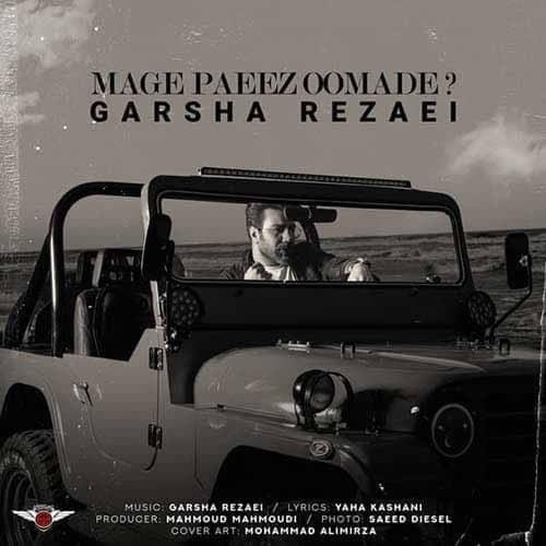 نایس موزیکا Garsha-Rezaei-Mage-Paeiz-Oomade دانلود آهنگ گرشا رضایی به نام مگه پاییز اومده